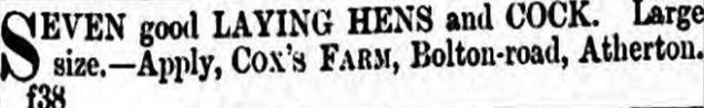 13 April 1888