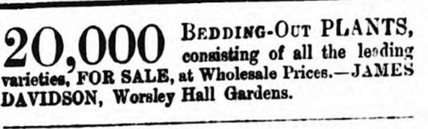 12 may 1866